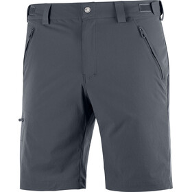 Salomon Wayfarer Shorts Men ebony